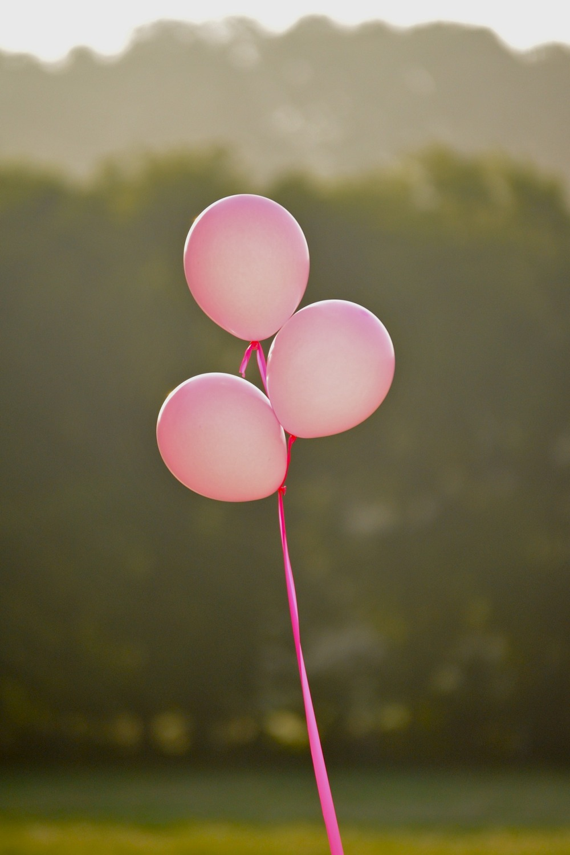 pink-1821381_1920